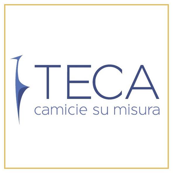 logo TECA